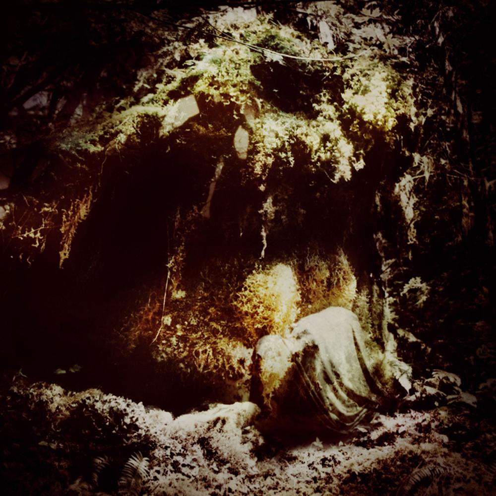 Wolves In The Throne, Celestial Lineage , Cover