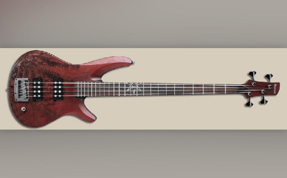 Signature Gitarre von Mike D'Antonio