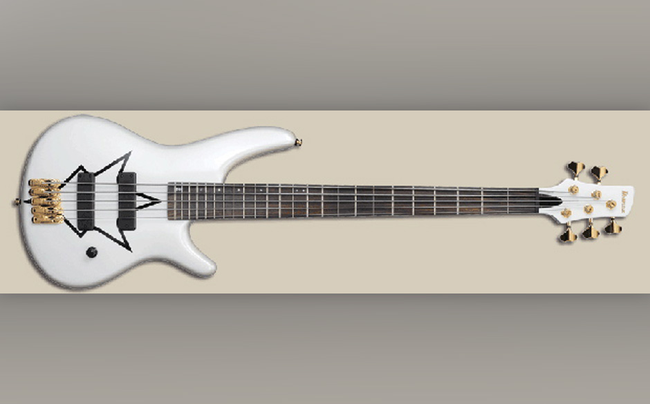 Signature Gitarre von Peter Iwers
