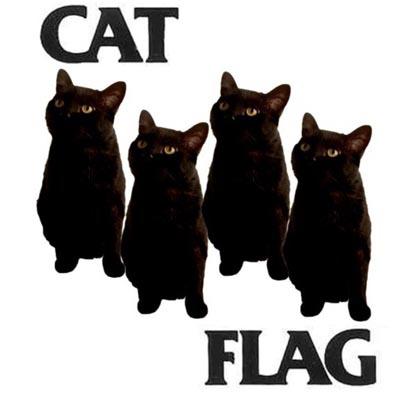 Katzen im Metal-Modus
