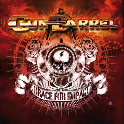 Gun Barrel Brace For Impact Cover