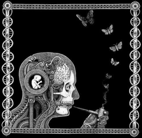 Soen Cognitive CD-Cover