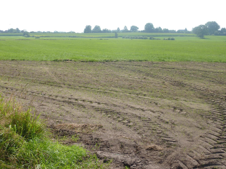 Wacken ohne Open Air, September 2012