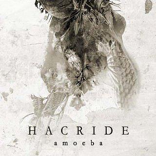 Hacride - Amoeba