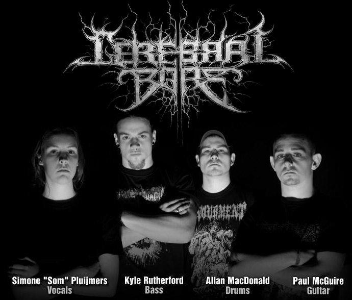 Cerebral Bore 2011