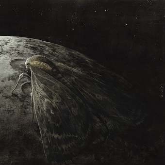 Augrimmer MOTH AND THE MOON