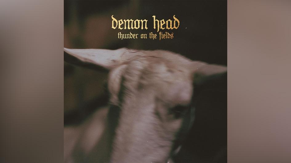 Demon Head THUNDER ON THE FIELDS