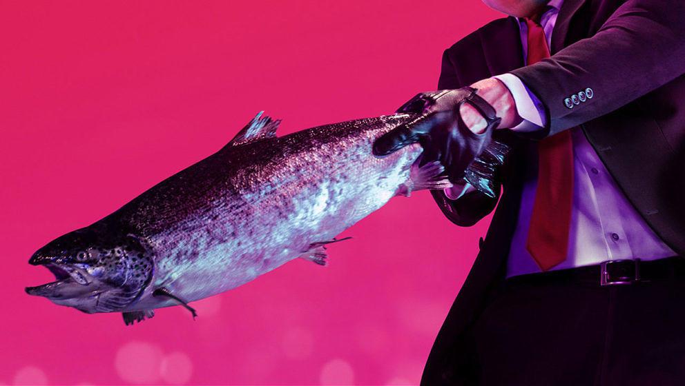 In den Händen von Agent 47 kann sogar ein Fisch tödlich sein.