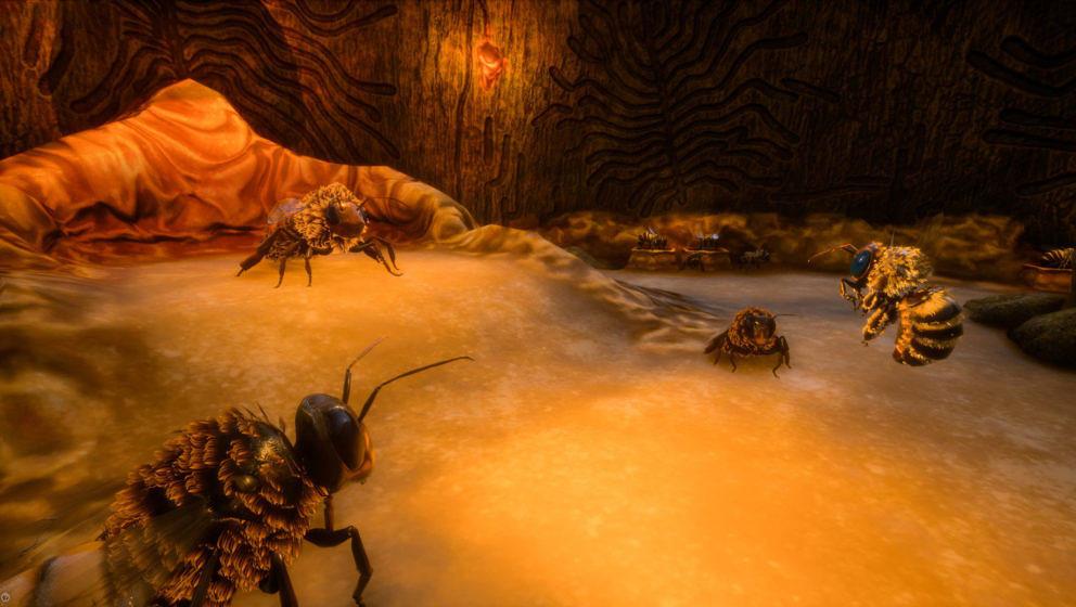 """Im """"Bee Simulator"""" schlüpft ihr in die Rolle einer Honigbiene"""