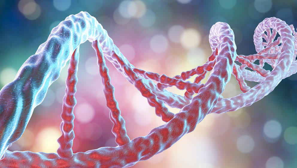 DNA molecule, computer artwork. The molecule of DNA (deoxyribonucleic acid) consists of a long double helix of phosphates and