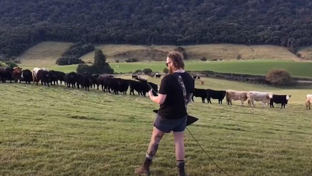 Die Kühe auf der Weide goutieren durchaus die düstere Riff-Kunst von Tom Latta